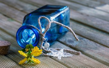 цветок, стекло, натюрморт, бутылочка, пробка, флакон, деревянная поверхность