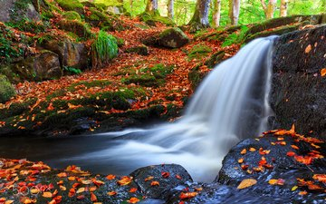river, nature, forest, leaves, waterfall, autumn, frederick bancale