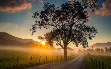 дорога, горы, природа, дерево, пейзаж, утро, поле, рассвет, забор, национальный парк грейт-смоки-маунтинс, теннесси