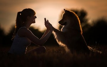 girl, smile, dog, profile, the game, friends