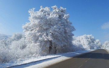 небо, дорога, деревья, снег, природа, зима, кусты, иней