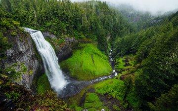 река, природа, лес, скала, водопад