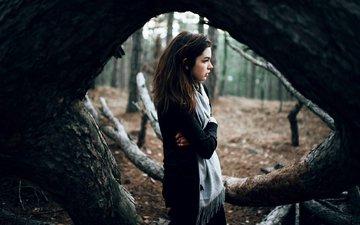дерево, лес, девушка, взгляд, модель, профиль, волосы, лицо, марат сафин