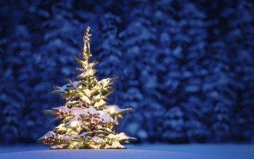 ночь, снег, новый год, елка, лес, зима, рождество, гирлянда