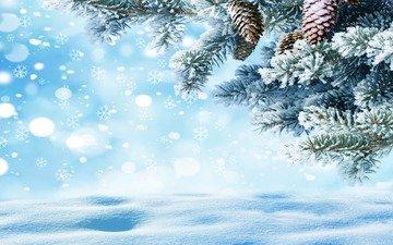 снег, хвоя, зима, макро, снежинки, ель, шишки