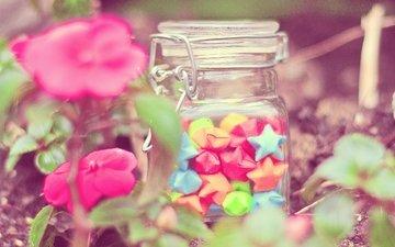 flowers, stars, bank, bokeh