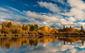 the sky, clouds, trees, lake, nature, forest, reflection, landscape, autumn