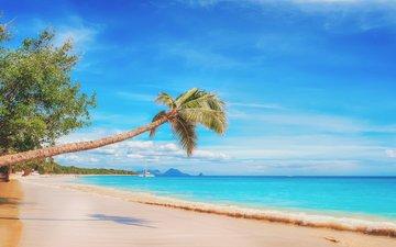 the sky, clouds, landscape, sea, sand, beach, palma