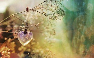 цветы, сердечко, сердце, украшение, боке, булавка
