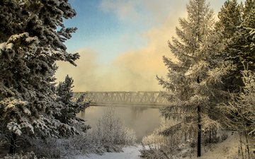 trees, river, nature, forest, winter, fog, bridge, russia, valery chernodedov, hangar