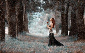 деревья, девушка, парк, платье, цветок, прогулка, снегопад