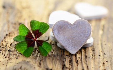 clover, hearts, wooden surface