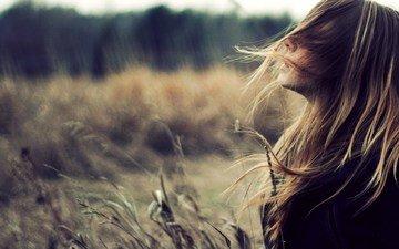 трава, природа, девушка, поле, профиль, лицо, ветер, длинные волосы, волосы в лицо