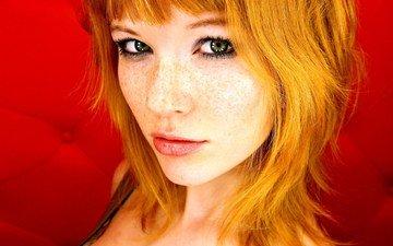 девушка, взгляд, волосы, лицо, красный фон, веснушки, рыжеволосая, мия соллис