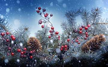 новый год, елка, хвоя, ягоды, рождество, шишки