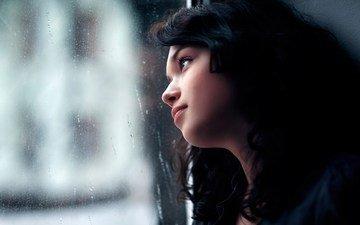 девушка, брюнетка, капли, взгляд, профиль, дождь, волосы, лицо, окно, стекло