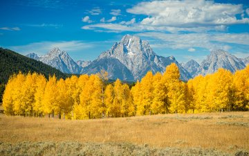 the sky, clouds, trees, mountains, nature, forest, autumn, ray green