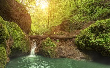river, rocks, nature, forest, landscape, waterfall, zsolnai gergely