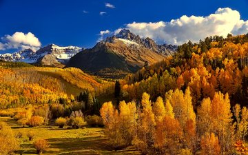 the sky, clouds, trees, mountains, nature, forest, autumn, colorado