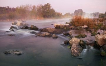 river, nature, fog, autumn