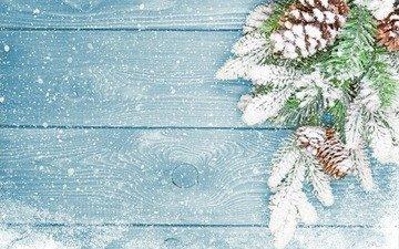 ветка, снег, хвоя, зима, макро, ель, шишки