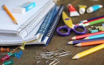 карандаши, ручки, ножницы, скрепки, тетради, школьные принадлежности