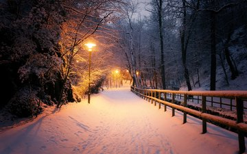 light, night, lights, nature, winter, park, mario zanella