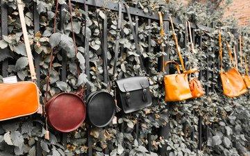 растения, листья, забор, ограда, сумки, сумочки, berit k. prohaszka