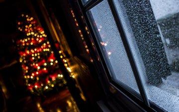 новый год, елка, окно, рождество, огоньки, гирлянда, боке, alvaro miranda