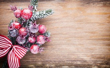 branch, new year, tree, berries, christmas, christmas decorations, bow