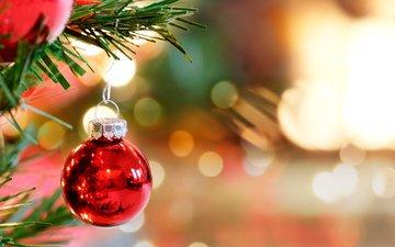 новый год, елка, игрушка, шар, рождество