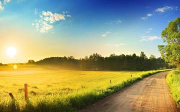 the sky, road, clouds, the sun, nature, forest, morning, field, dawn