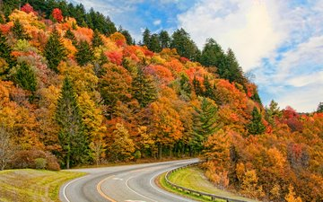 the sky, road, clouds, trees, nature, forest, autumn, timothy r wildey