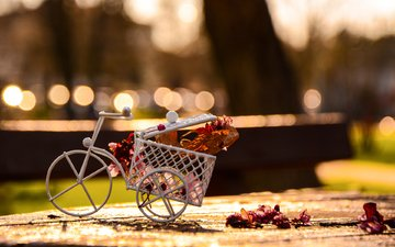 flowers, petals, bike, figure, souvenir