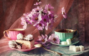 flowers, fabric, saucer, cup, sugar, cakes, table, still life, veil, tablecloth, kosmeya, anastasia soloviova
