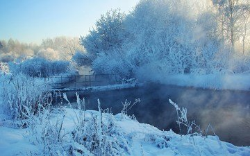 river, snow, nature, forest, winter, the bushes, bridge, frost