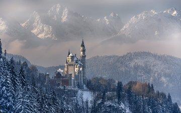 горы, лес, зима, замок, германия, нойшванштайн, бавария, achim thomae