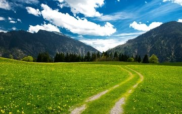 the sky, road, flowers, grass, clouds, trees, mountains, alps, bayern