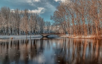 trees, river, nature, forest, winter, reflection, landscape, park, trunks, bridge