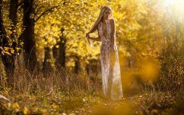 девушка, платье, блондинка, осень, модель, вырез, декольте, anton komar, екатерина аврамчикова