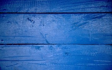 tree, texture, blue, color, board, wood, wooden surface