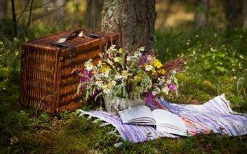 цветы, трава, природа, букет, корзина, полевые цветы, книга, пикник, коврик