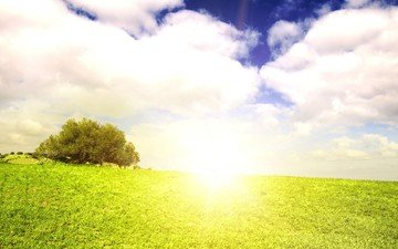 the sky, grass, clouds, nature, tree, landscape, summer, sunlight