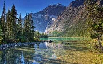 trees, lake, mountains, nature, forest