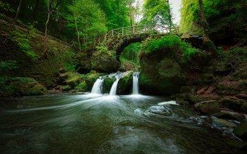 река, природа, лес, мост, водопад, olivier ferrari