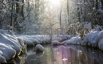 river, nature, forest, winter