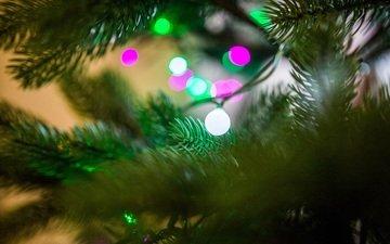 огни, хвоя, праздник, рождество, гирлянда, боке