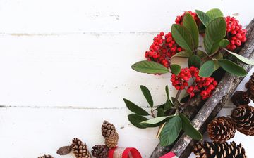 leaves, table, berries, christmas, bumps