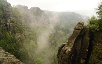 trees, rocks, nature, fog, valley