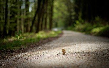 дорога, деревья, размытость, данбо, картонный робот